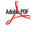 Arquivo Padrão em formato Adobe PDF